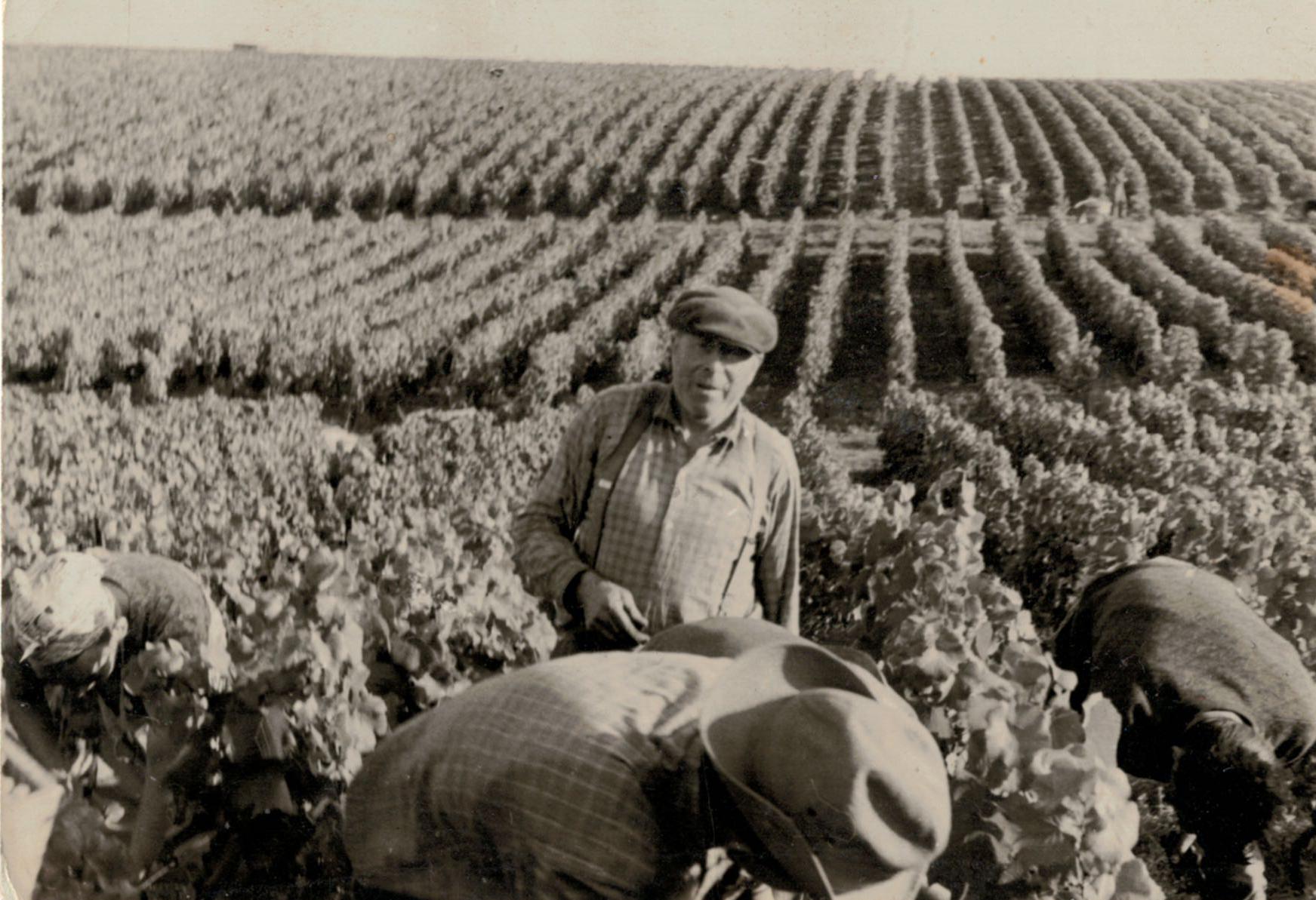 Historique du Champagne Francois Girard